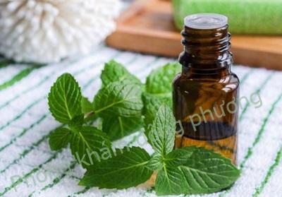 Dùng tinh dầu bạc hà chữa bệnh ghẻ