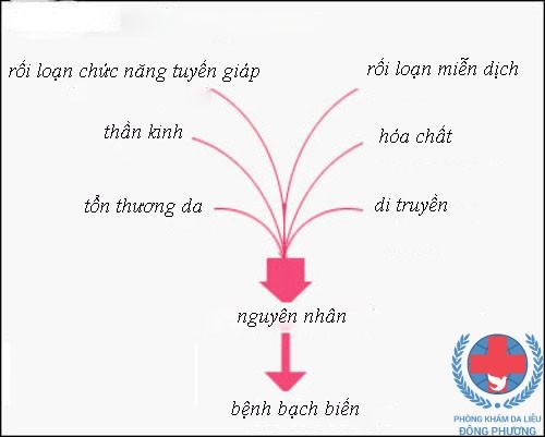 Moi Thong Tin Quan Trong Ve Benh Bach Bien